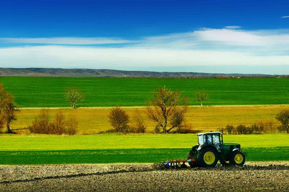 Koster srl Agricoltura in pieno campo farming Impianto compostaggio Lavorazioni agricole Movimento terra