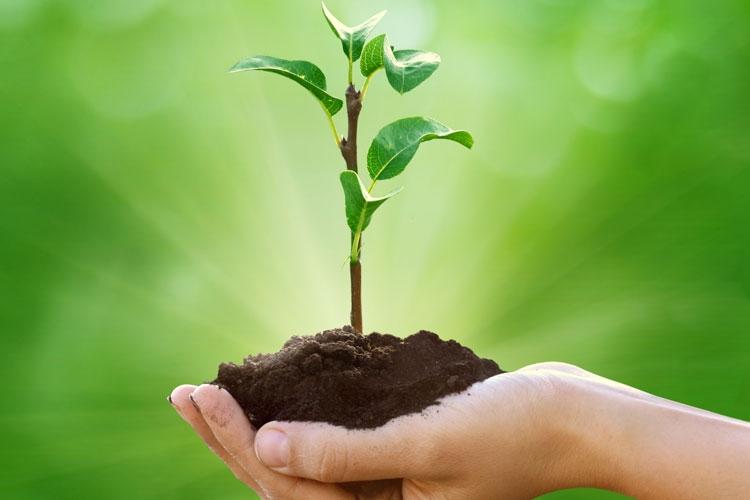 Koster srl Impianto compostaggio Lavorazioni agricole Movimento terra