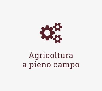 Koster srl icona header prodotti servizi agricoltura a pieno campo Impianto compostaggio Lavorazioni agricole Movimento terra